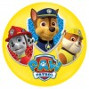 Light Up Ball 100mm Paw Patrol Assort.