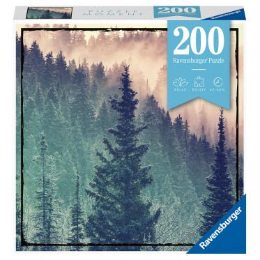 200 pcs Puzzles (6)